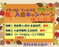 秋の入会キャンペーンを開催!