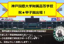 神戸国際大学附属高等学校 野球部 ~祝!第103回夏の甲子園出場~